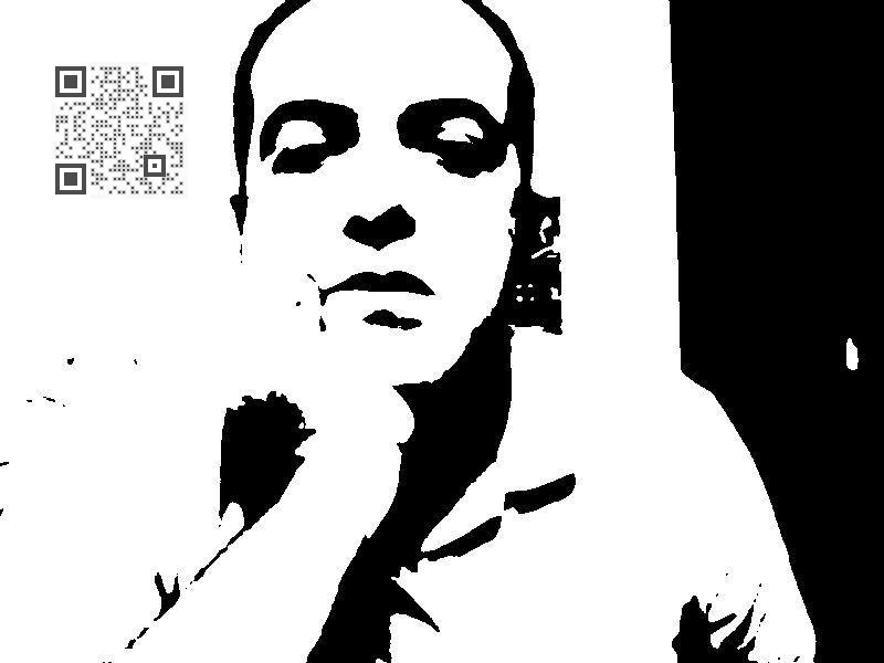 Visual QR Code qr code image