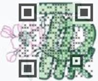 Visual QR Code QR Design