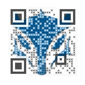 Visual QR Code make qr code